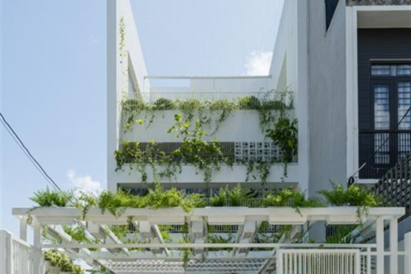 Nhà trong mơ nhờ để sân vườn chiếm nửa đất