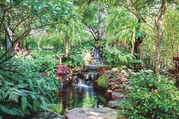 Ngôi nhà có sân vườn, ao cá, thác nước, là mơ ước gần 20 năm của gia chủ mê cây cảnh
