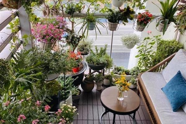 bds68 chia sẽ vài mẫu thiết kế ban công với cây xanh và hoa lá