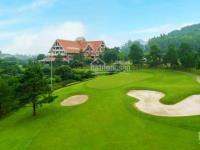 Bán 1 số lô đất biệt thự trong khu quần thể golf and resort tam đảo  vĩnh phúc.  096.5555.***