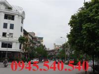 Chính chủ bán cắt lỗ gấp căn góc nhà vườn dự án Tổng cục 5 Tân Triều: 106m giá 10,7 tỷ